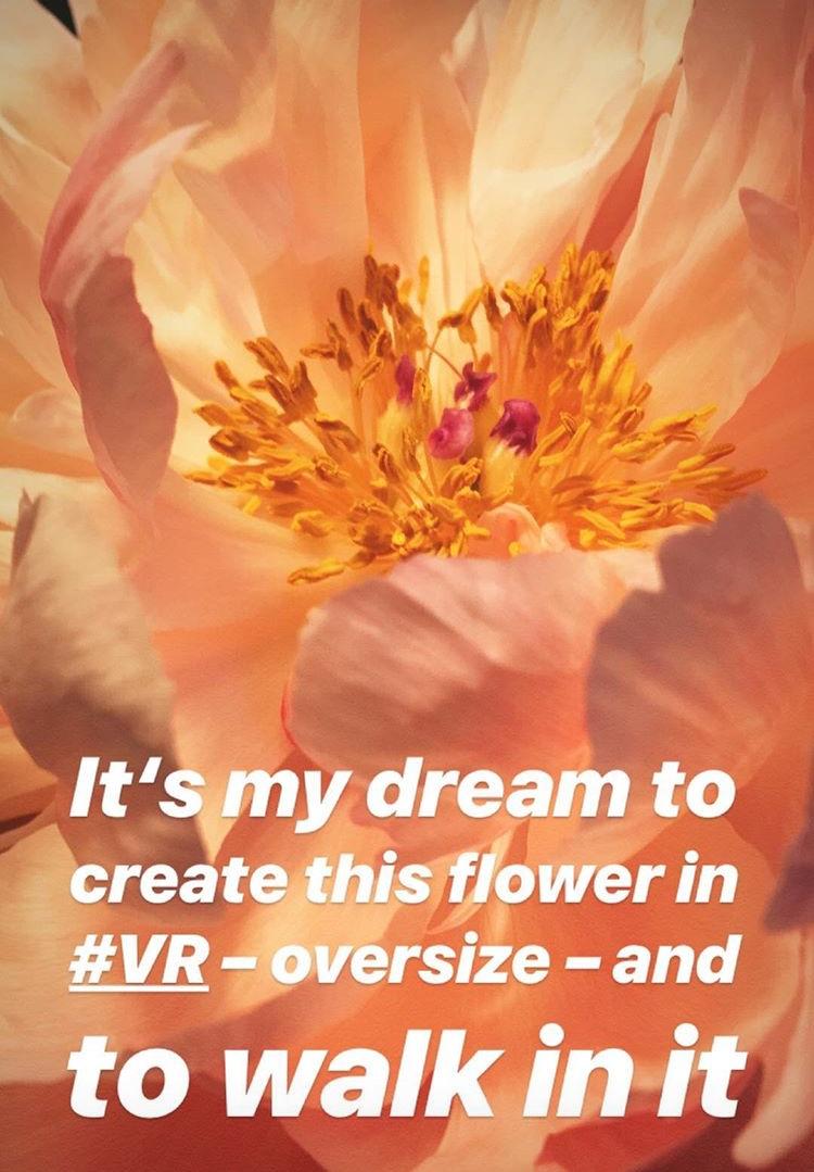 VR flower